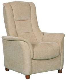 Derwent Chenille Fabric Fixed Armchair in Beige