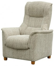 Derwent Chenille Fabric Fixed Armchair in Wheat